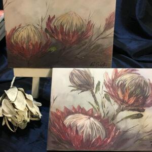 Protea Original Prints