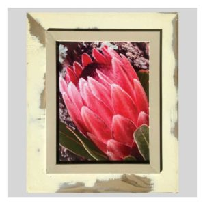 Distressed Frame: Protea Op Bas Linker Hoek