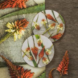 Aloe Potstands Set Of 2 (Aloe Row)