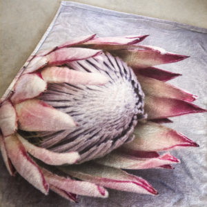 Protea Fleece Baby Blanket (Protea On Grey)