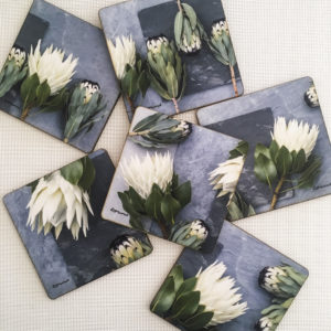 Protea Coasters Set Of 6 (Sage & Grey Shades)